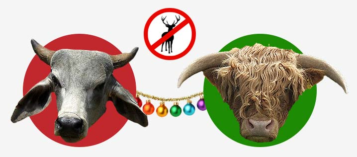 Say NO to Reindeers this Christmas!