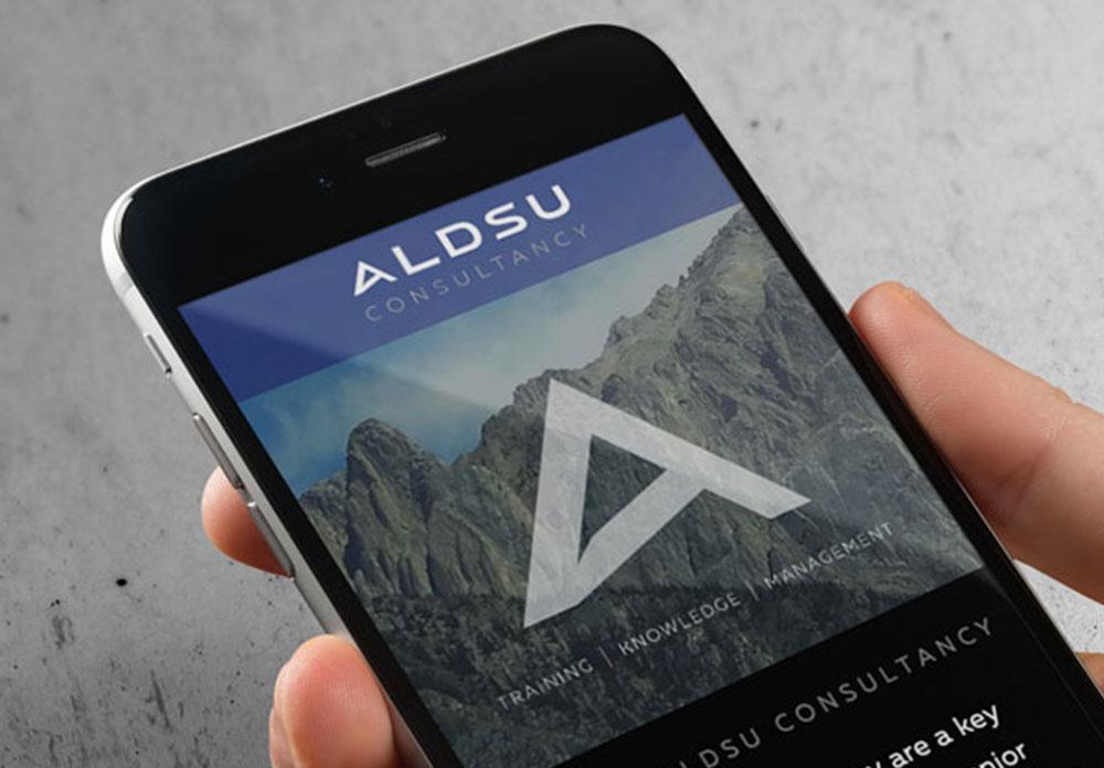 ALDSU Consultancy
